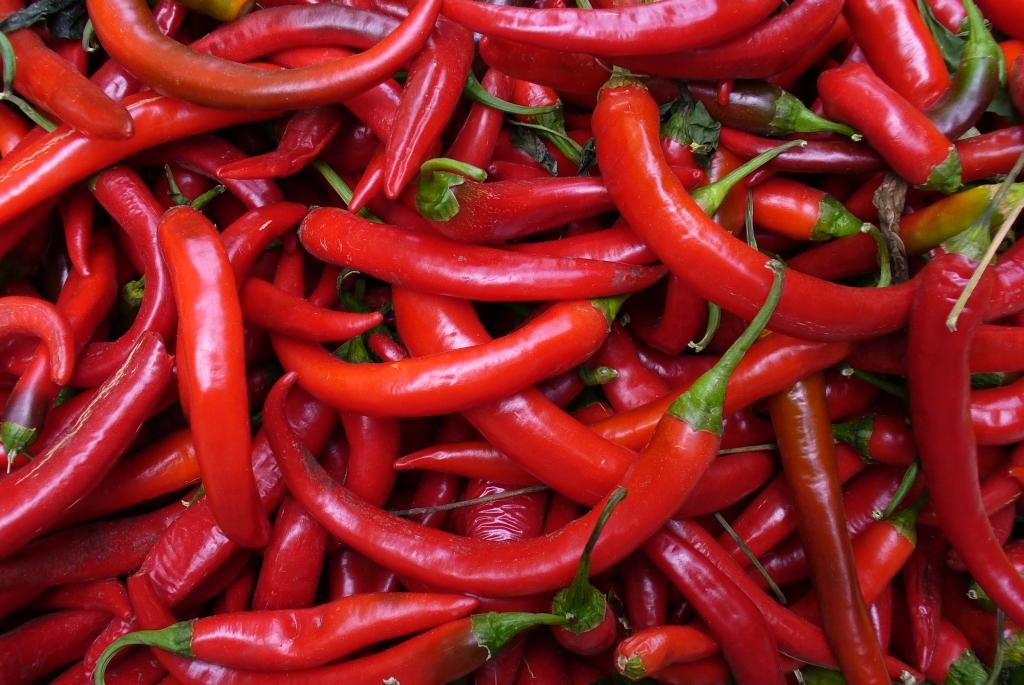 Image result for red chili